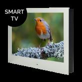 """ProofVision - 19"""" Bathroom Smart TV - Mirror"""
